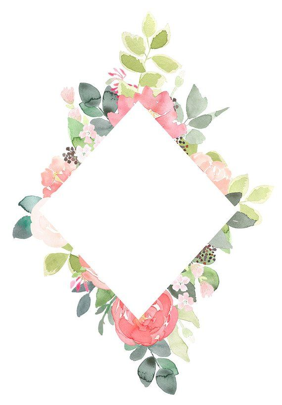 Peony floral frames coral. Peonies clipart graduation flower