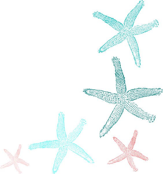 Starfish clipart three. Coral and teal clip