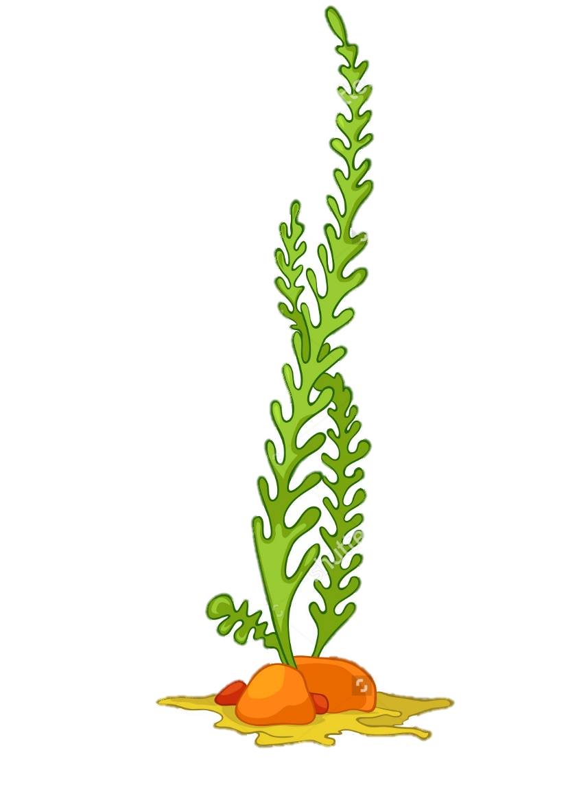 Planting clipart under sea. Plants simple deep ubeesu