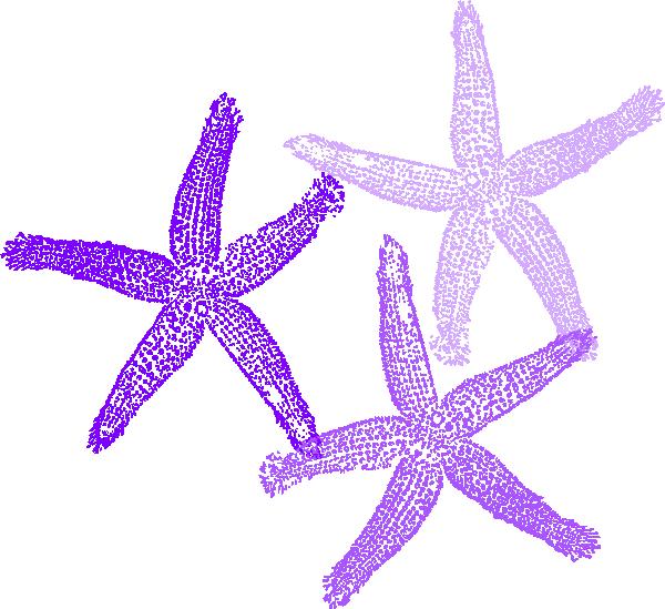 Starfish clip art at. Purple clipart coral