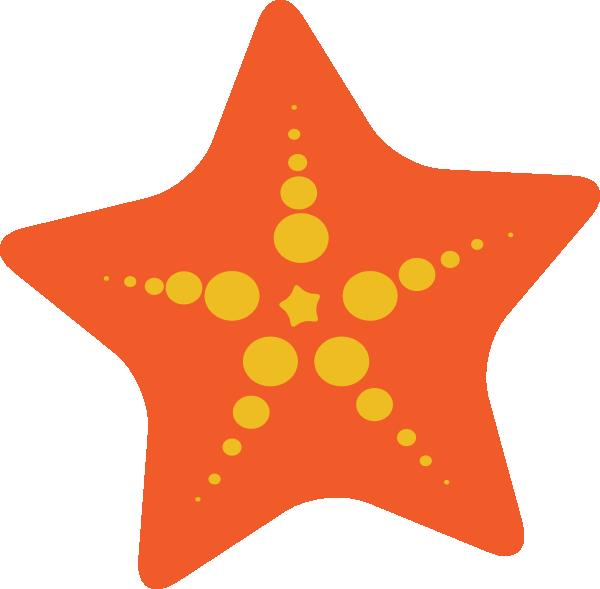 Starfish sea creature