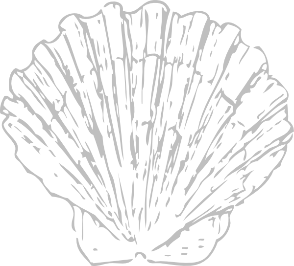 Seashell clip art at. Shell clipart small