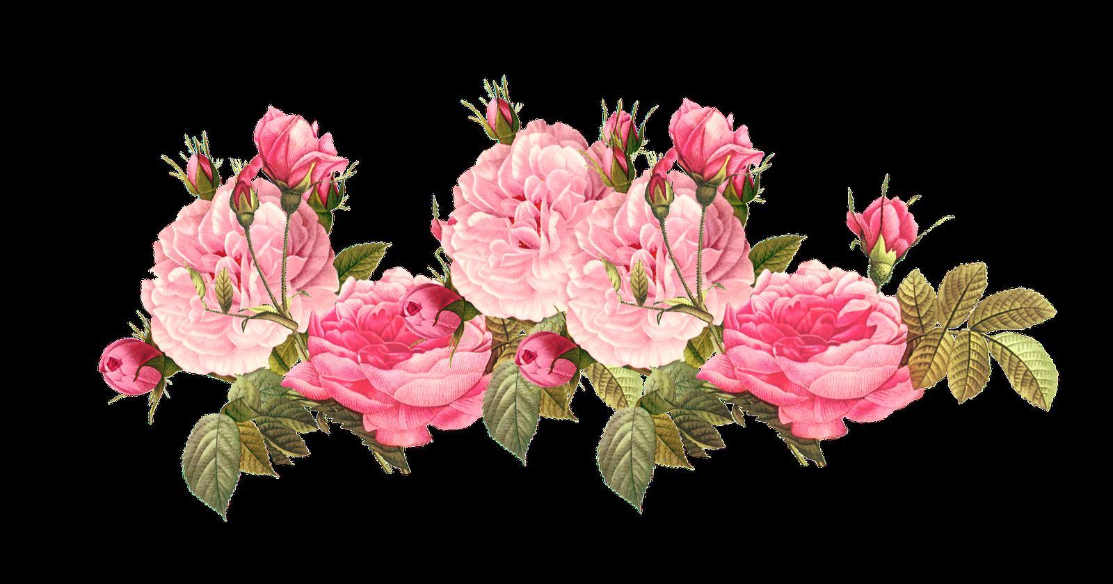 Vintage pink roses wallpapers. Flower png tumblr