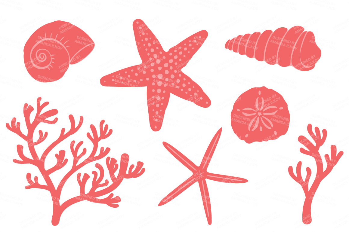Coral clipart. Seashore shells in by