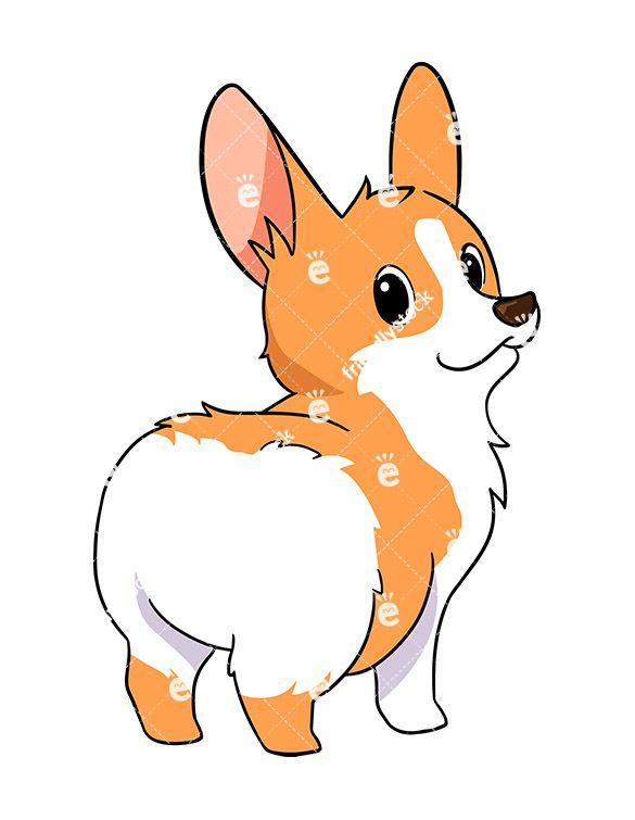 Corgi clipart. Cute dog cartoon vector
