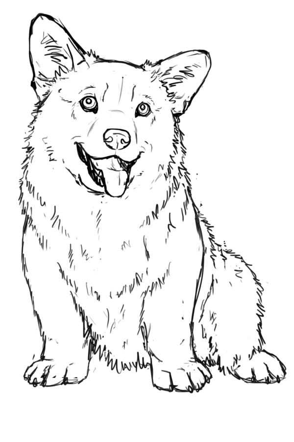 Coloring pages. Corgi clipart black and white
