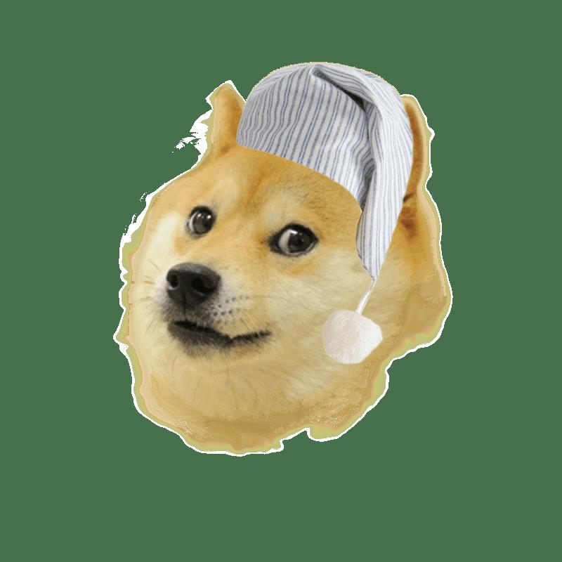 Doge full smiling png. Corgi clipart transparent background