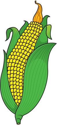 Clip art free panda. Corn clipart