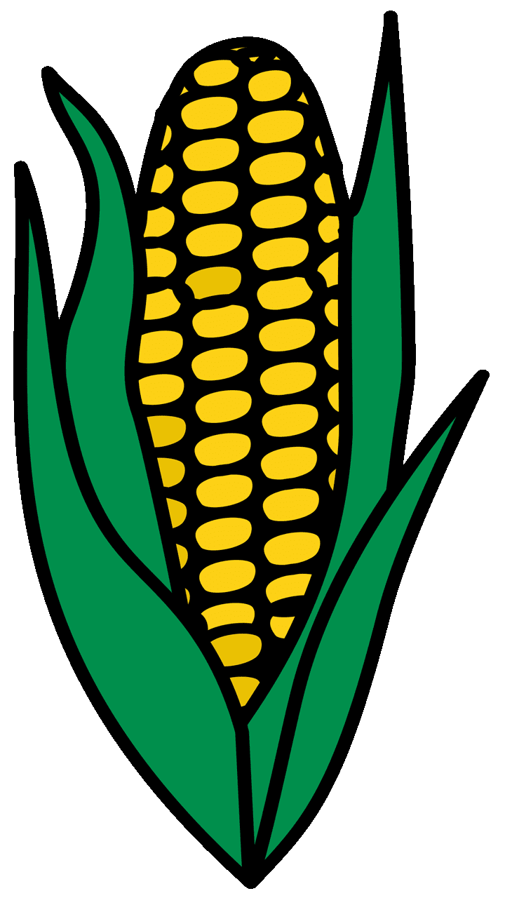 Corn clipart.  surprising for free