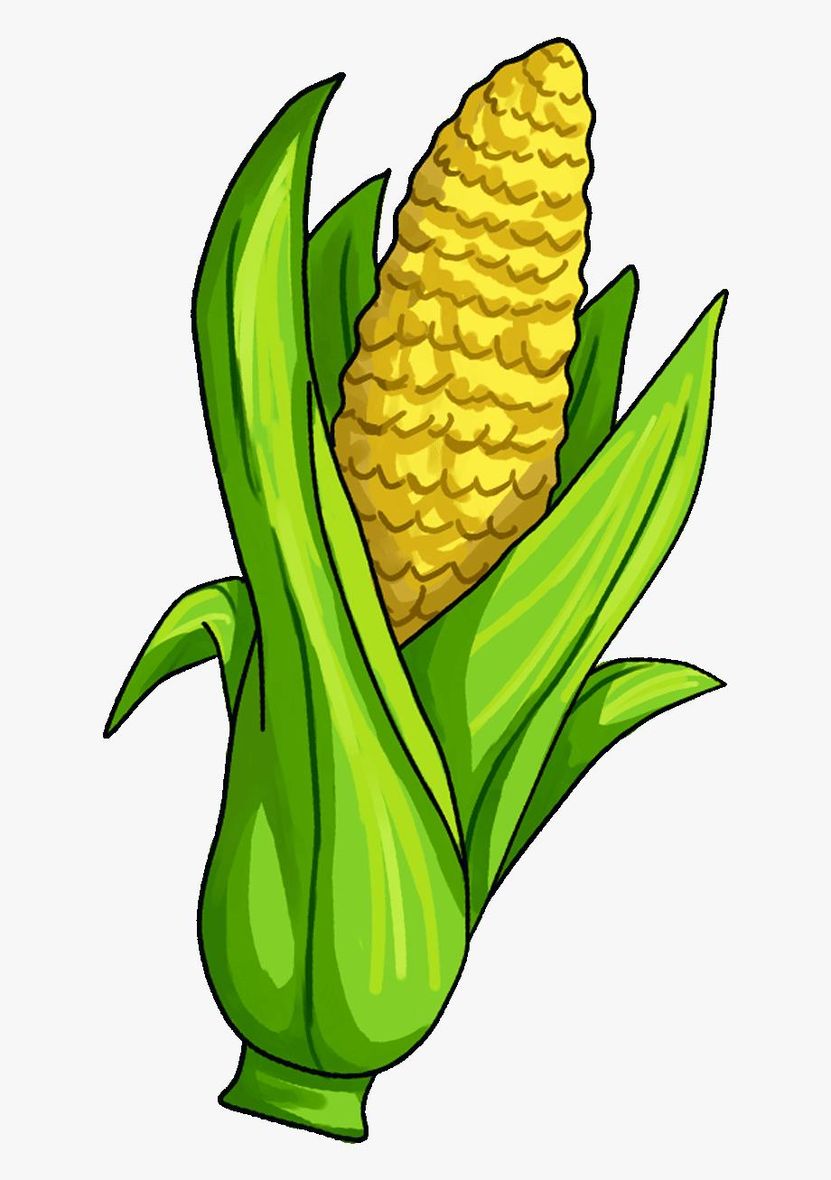 Pin van Brenda Wozniakewicz op Corn   Groenten