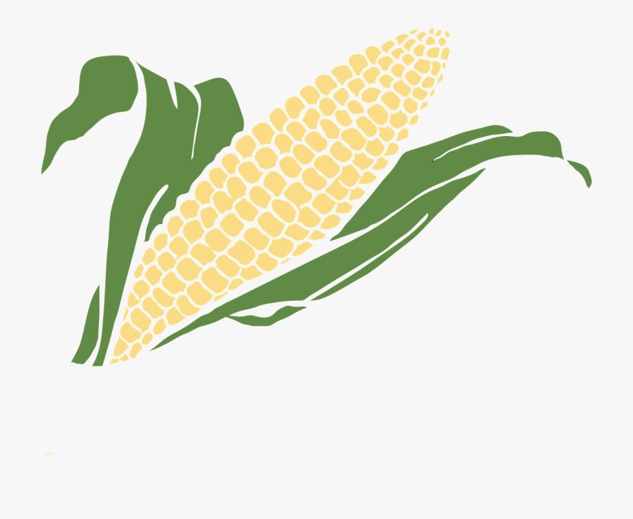 Transparent background clip . Grains clipart corn grain