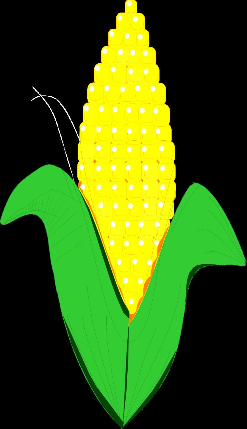 Cartoon cliparthut free clipartioncom. Corn clipart field corn