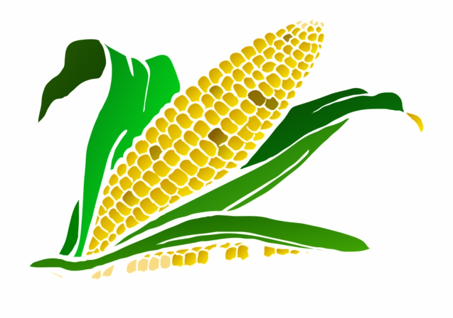 Harvesting crop patsy pinterest. Corn clipart logo