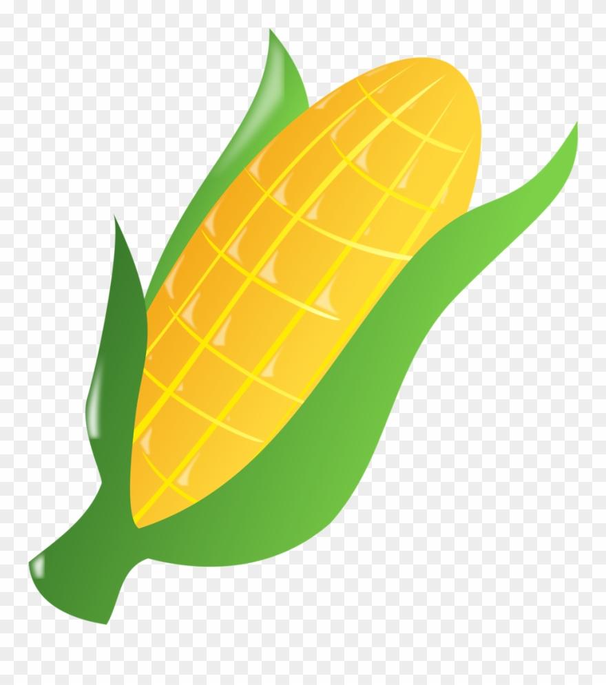 Corn clipart logo. Popular images ear of
