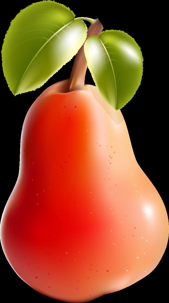 Pear clipart poire.  png pinterest clip
