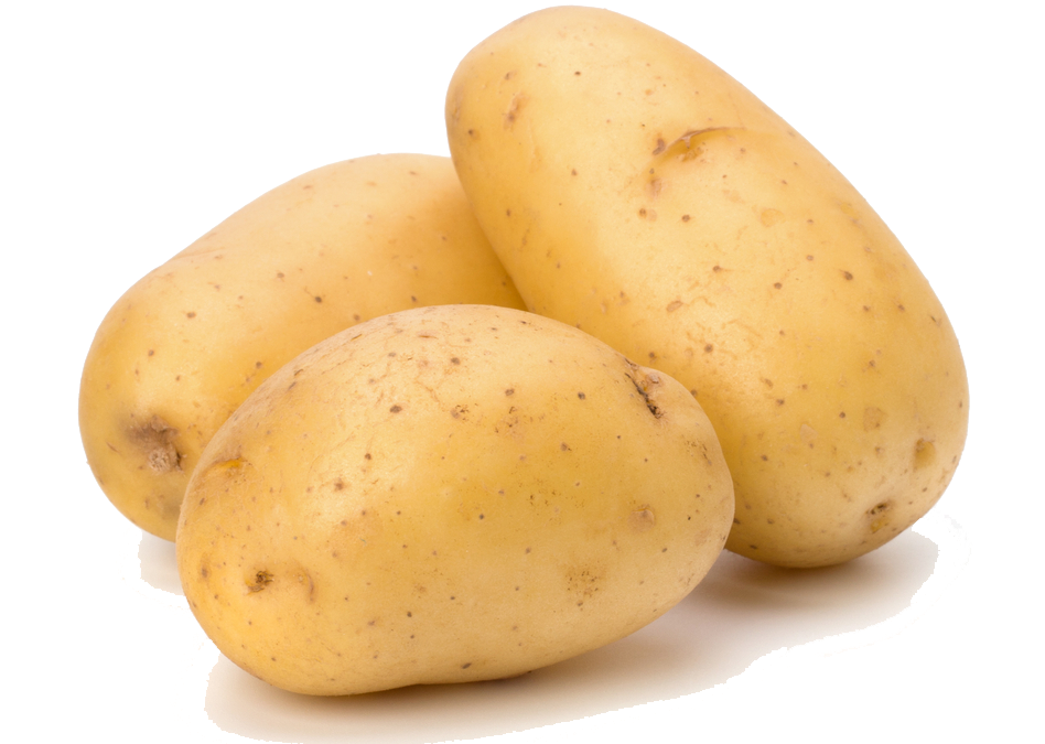 Five isolated stock photo. Corn clipart potato