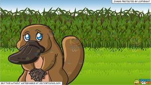 Sad clipart corn. A looking platypus and