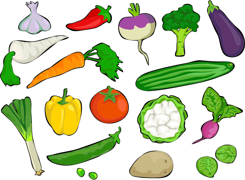 Broccoli sprouts black aztec. Vegetables clipart turnip
