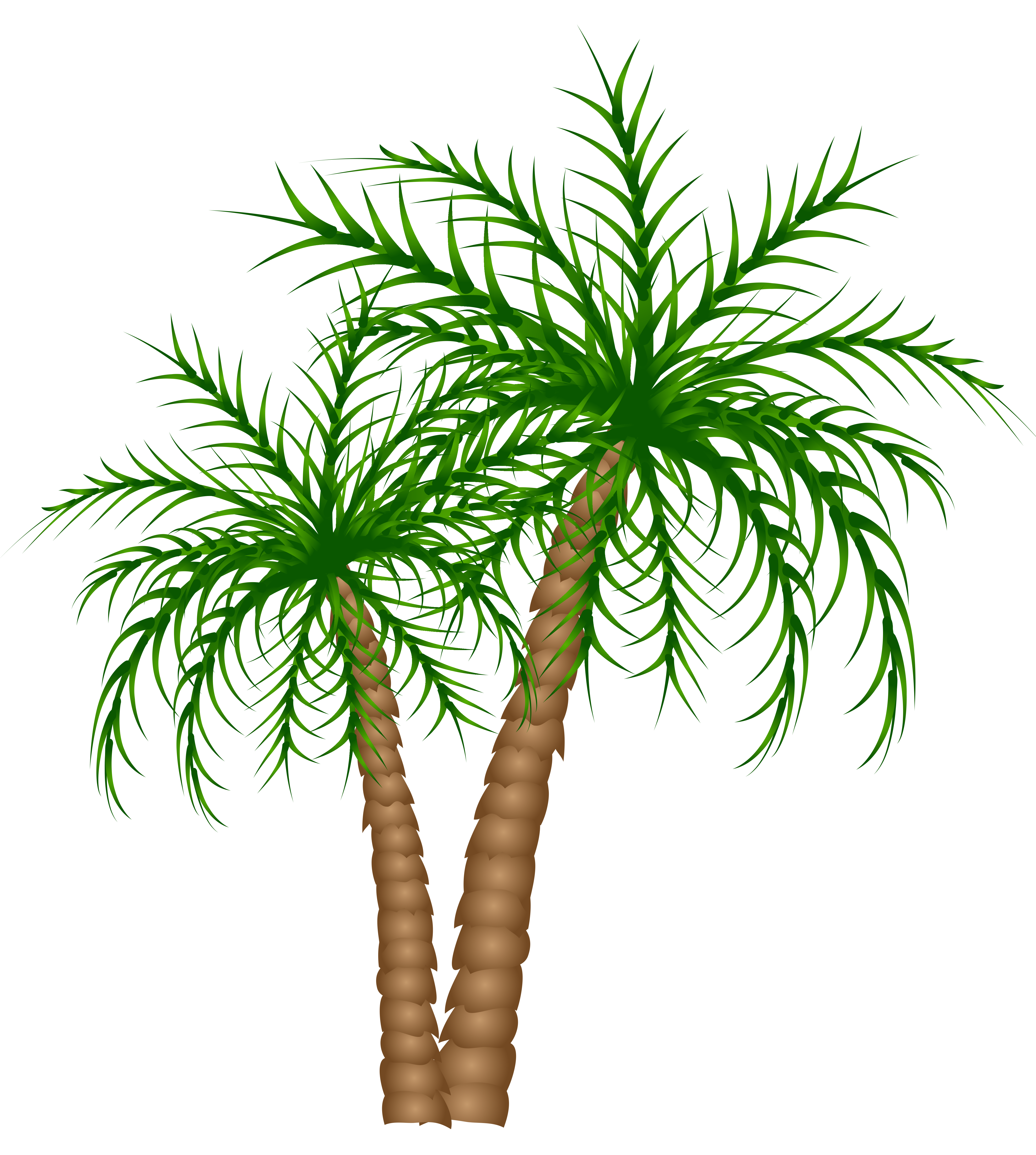Grains clipart tree. Palm trees png picture