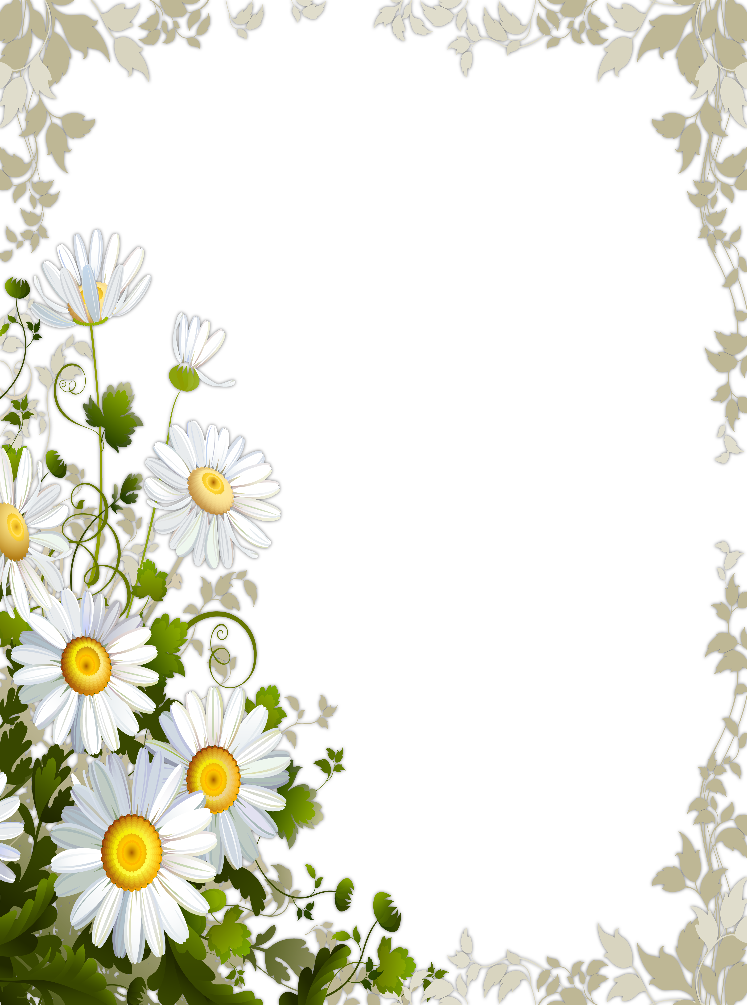 Transparent with gallery yopriceville. Daisies clipart frame