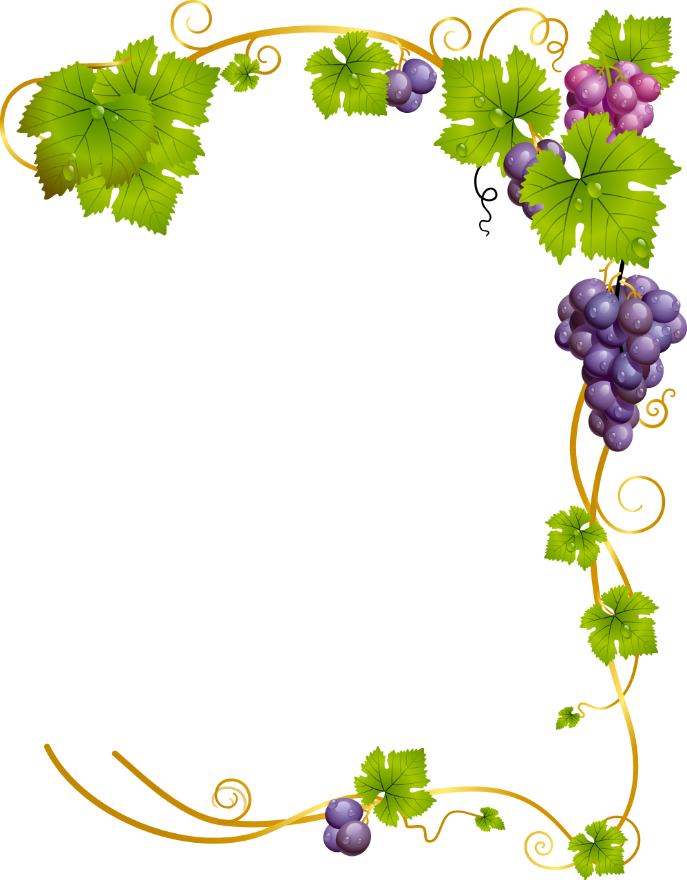 pinterest. Vines clipart watercolor