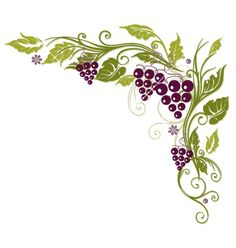 Free grapevine border cliparts. Grapes clipart frame