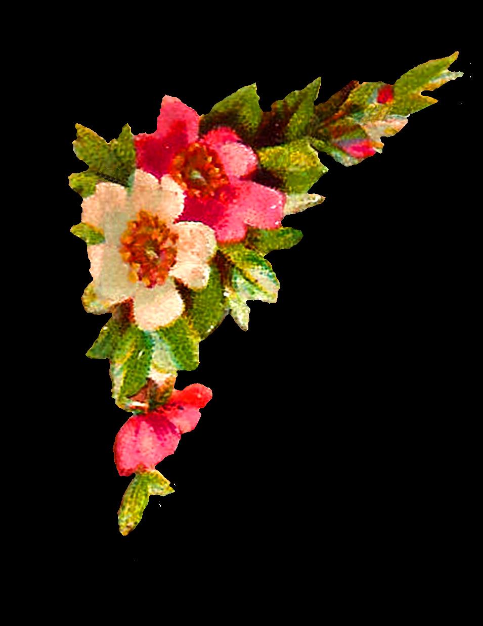 Antique images digital design. Flower corner png