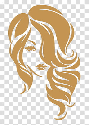 Hairdresser clipart hair extension. Beauty parlour chicago extensions