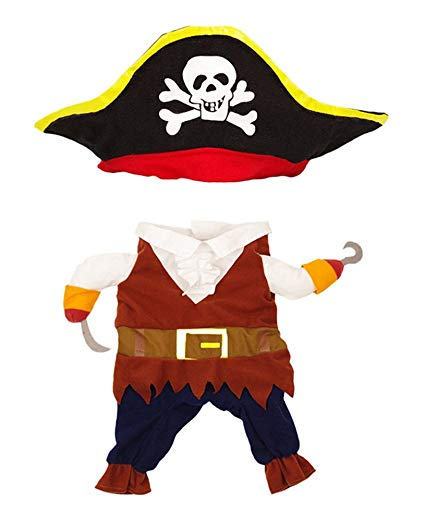 Topsung cool caribbean pet. Costume clipart pirate costume