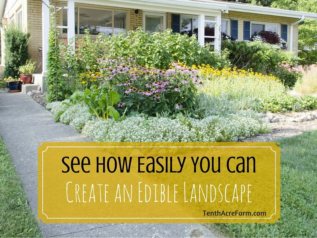 Cottage clipart front garden. See how easily you