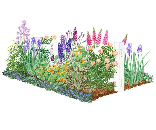 Plans for style . Cottage clipart front garden