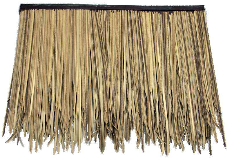 Cottage clipart thatch. Baja palm layer sub