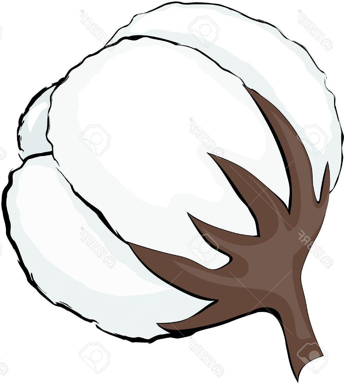 Hd logo clip art. Cotton clipart