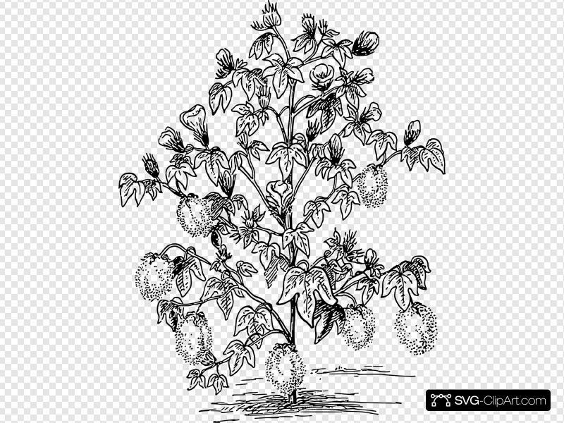 Cotton clipart bush. Plant clip art icon