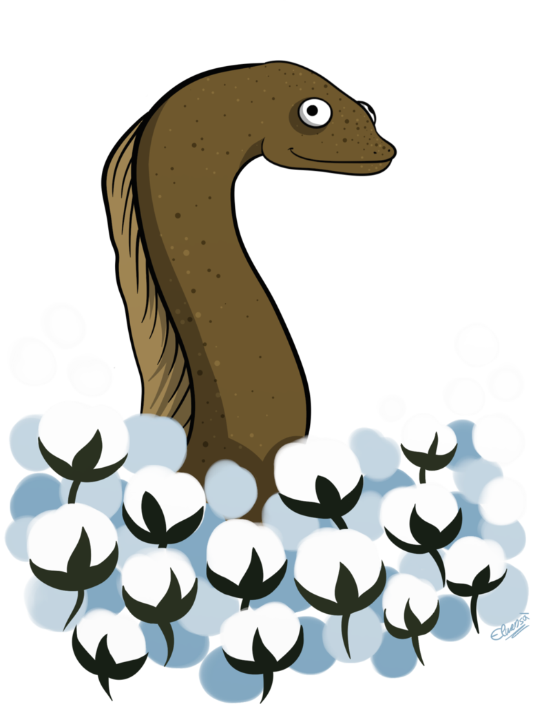 Eel in a field. Cotton clipart coton