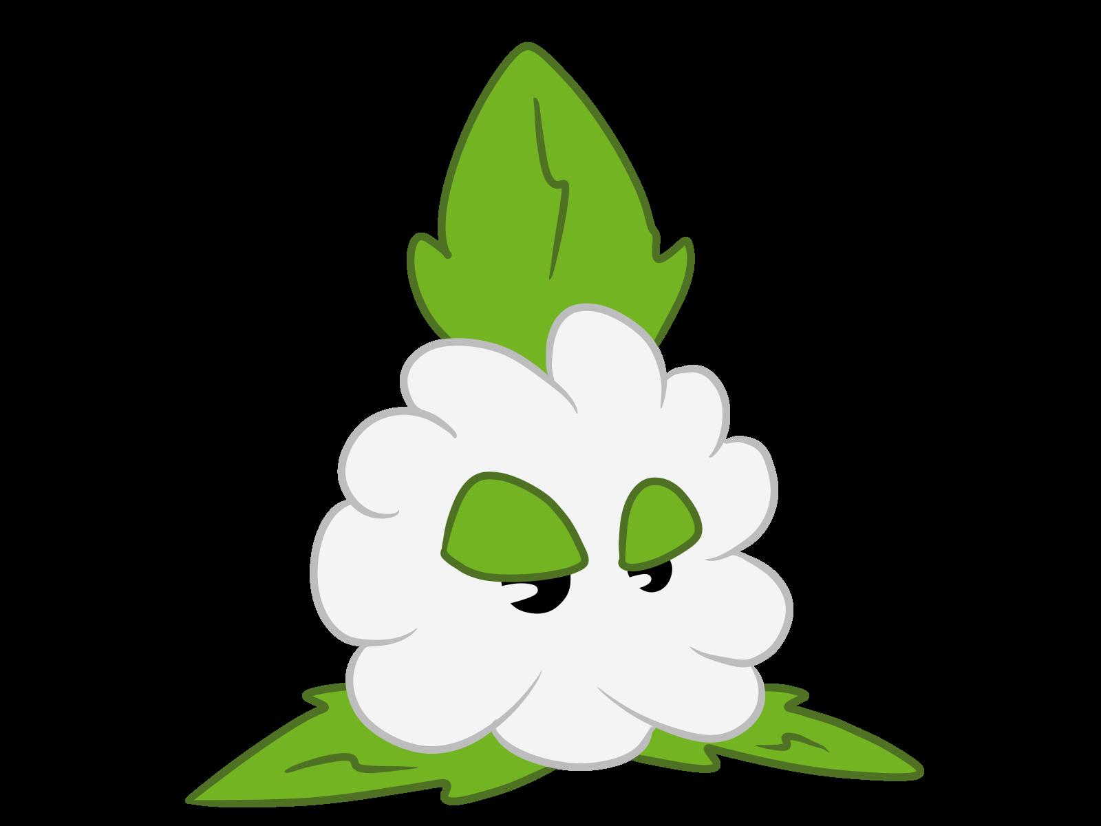cotton clipart cotton crop