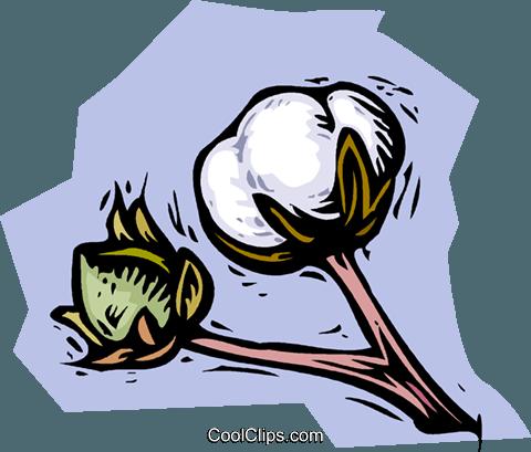 Cotton clipart cotton farm. Free download best on