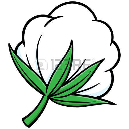 Pods drawing ideas seeds. Cotton clipart cotton seed