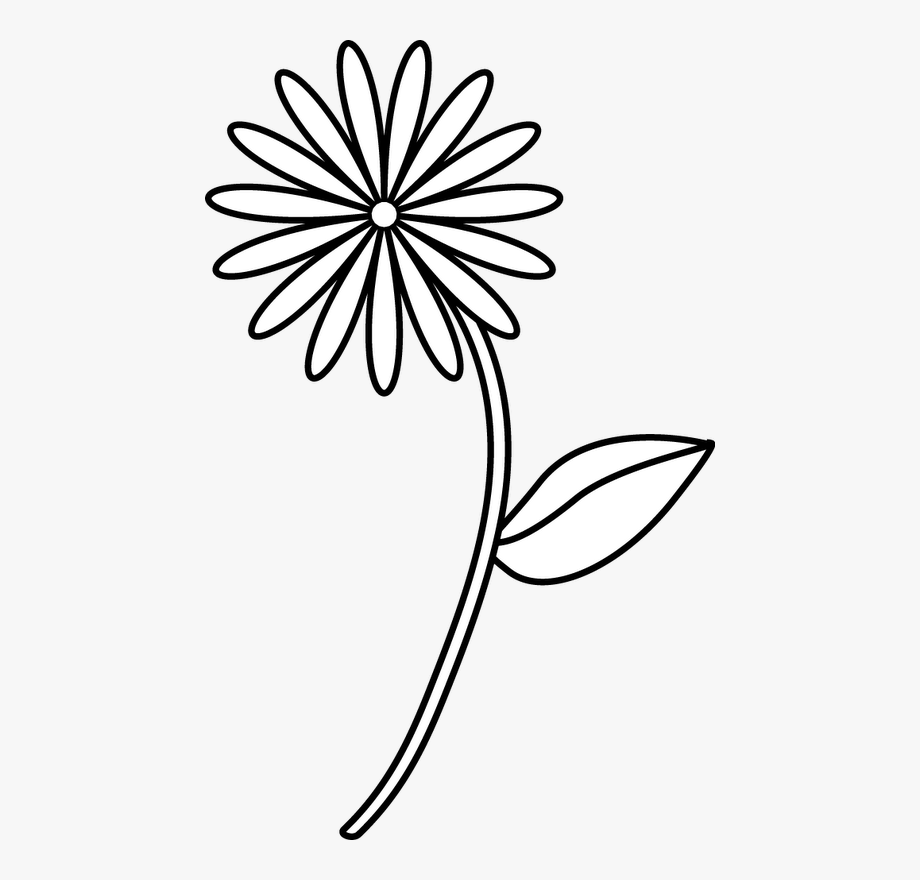 Flower easy drawing cliparts. Cotton clipart simple