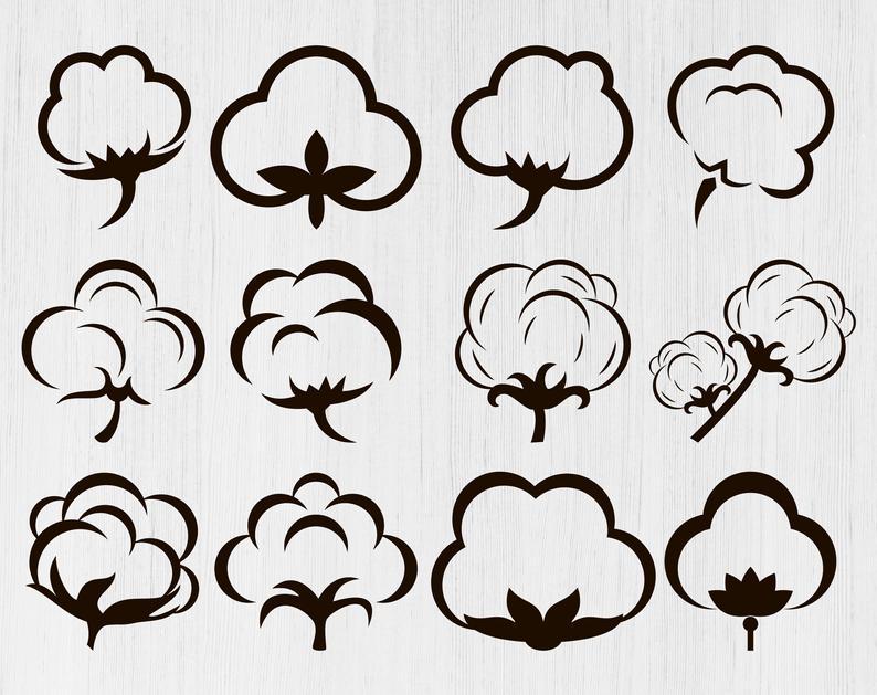 Files boll flower cut. Cotton clipart svg