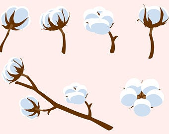 Cotton clipart vector. Plant svg etsy