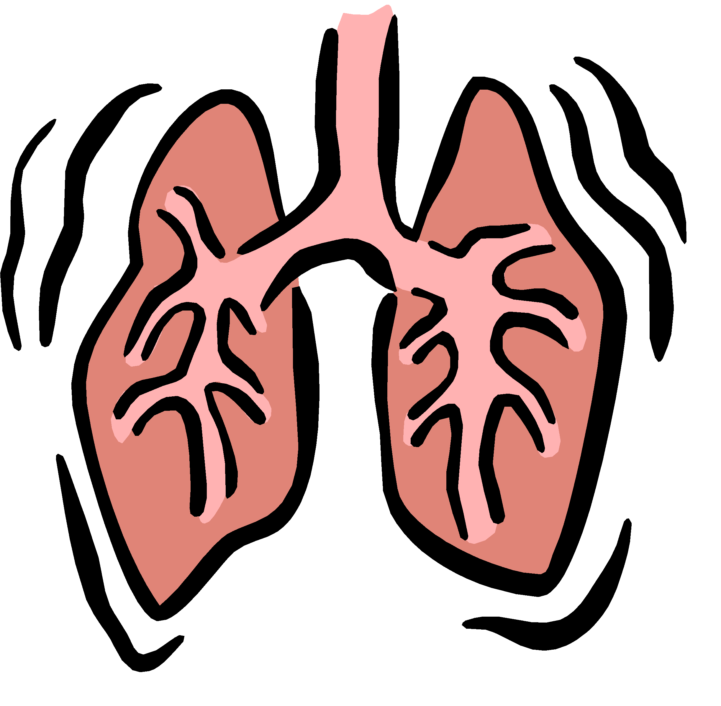 Lungs clipart animated. Respiratory system therapist respiration