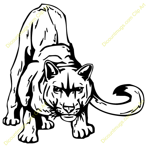 . Cougar clipart