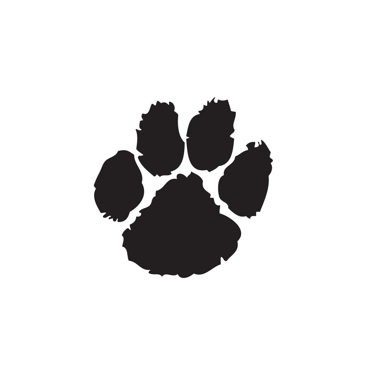 cougar clip art. Paw clipart royalty free