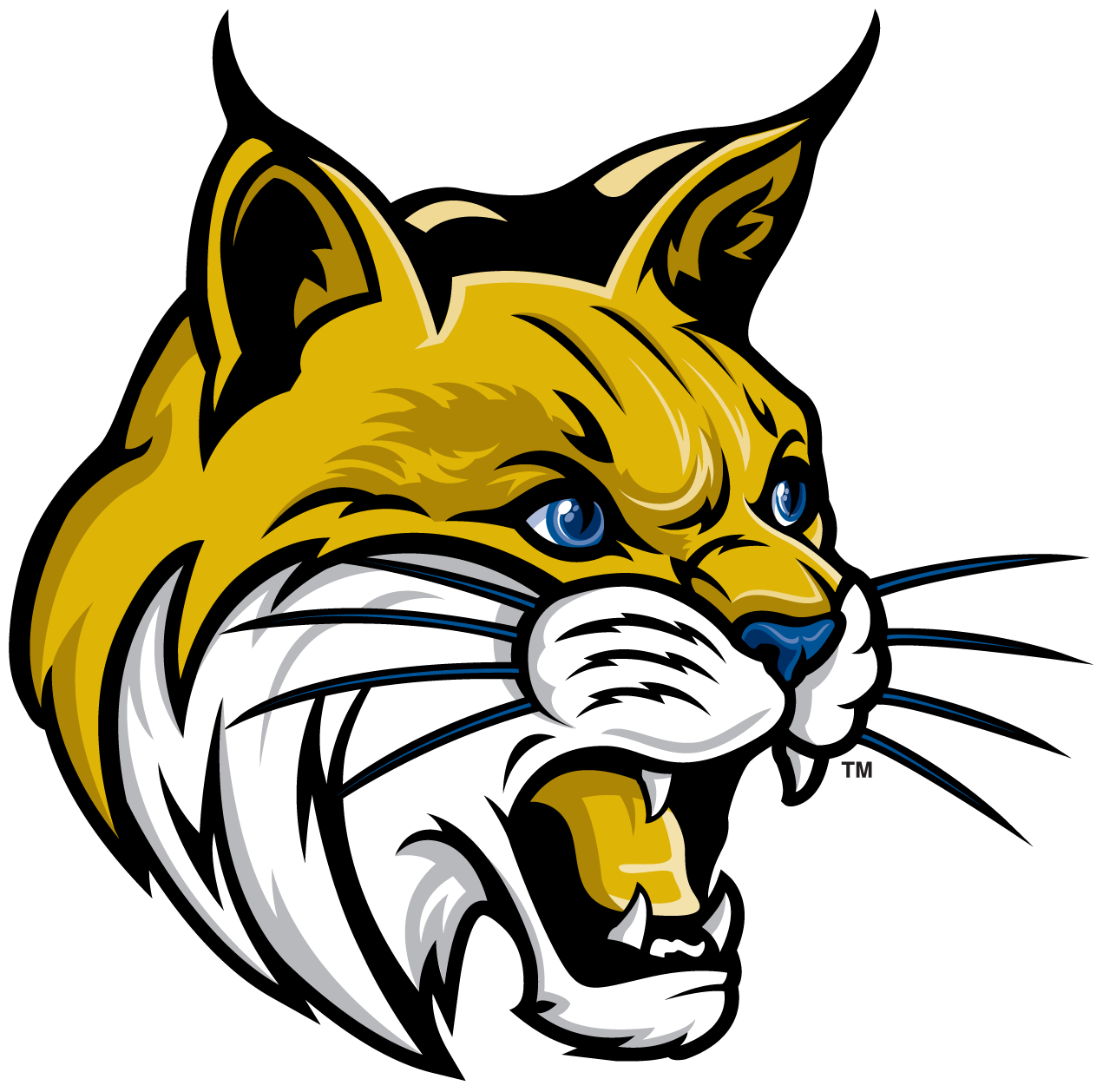 Mascot secondary ucm lg. Wildcat clipart bobcat
