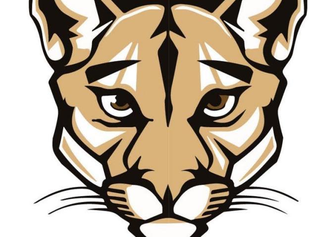 Free carmel download clip. Cougar clipart cool