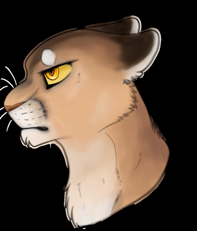 Drawing at getdrawings com. Cougar clipart eye