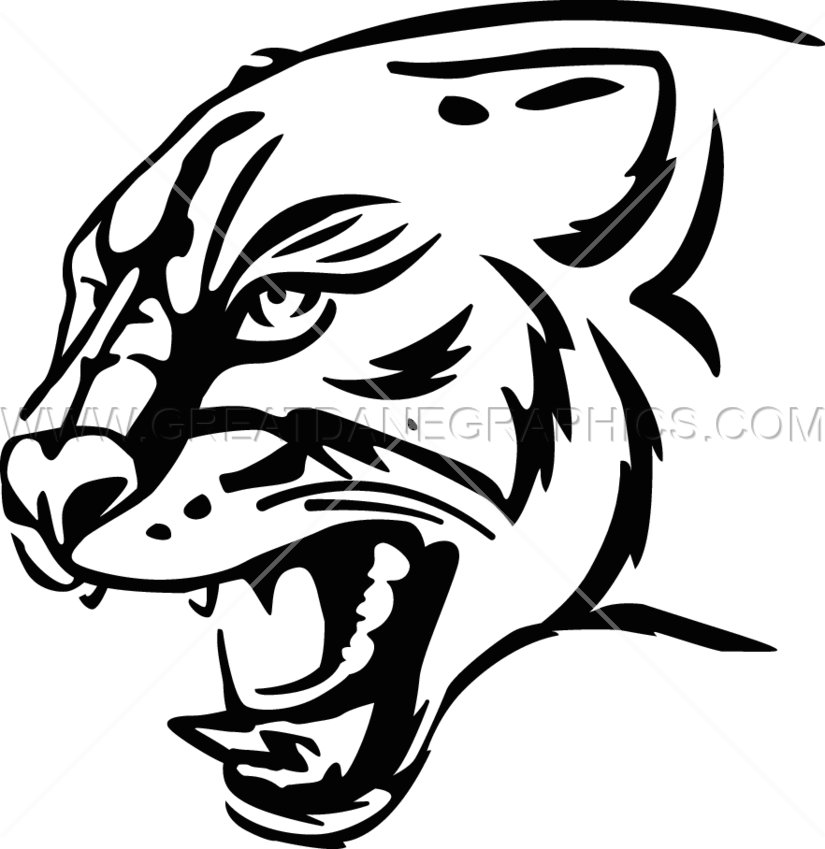 Panther black and white. Cougar clipart scratch marks