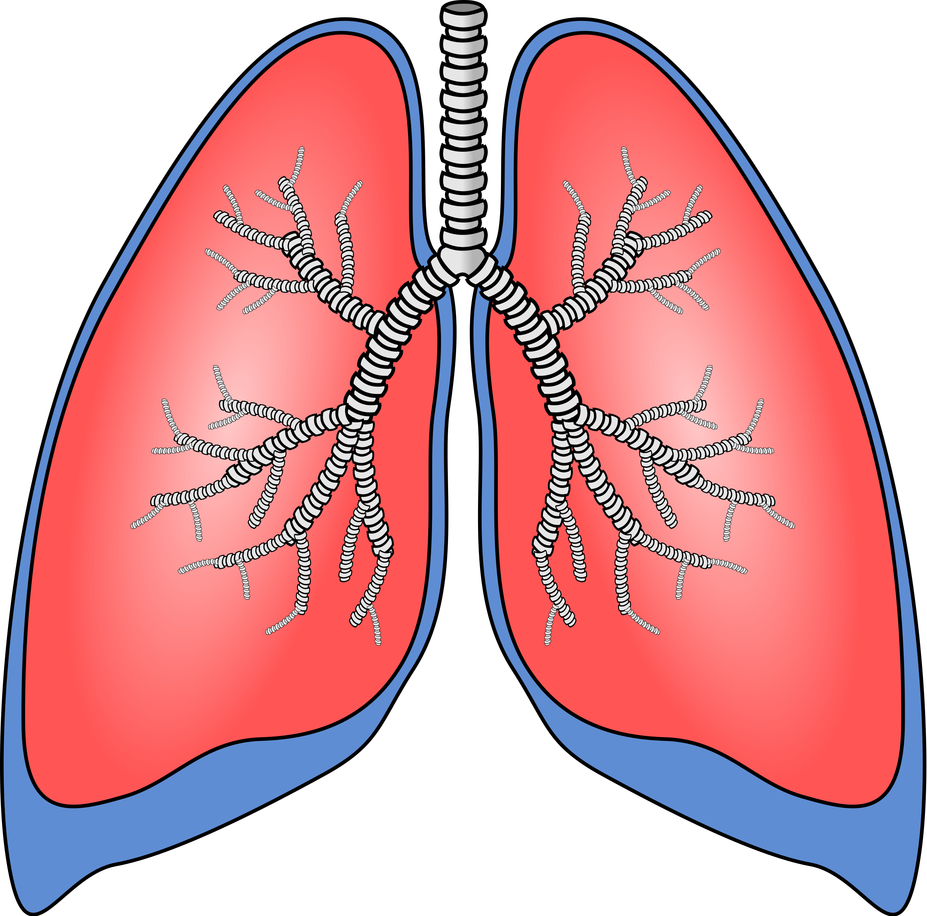 Cough clipart lung cancer. Index of farma bilder