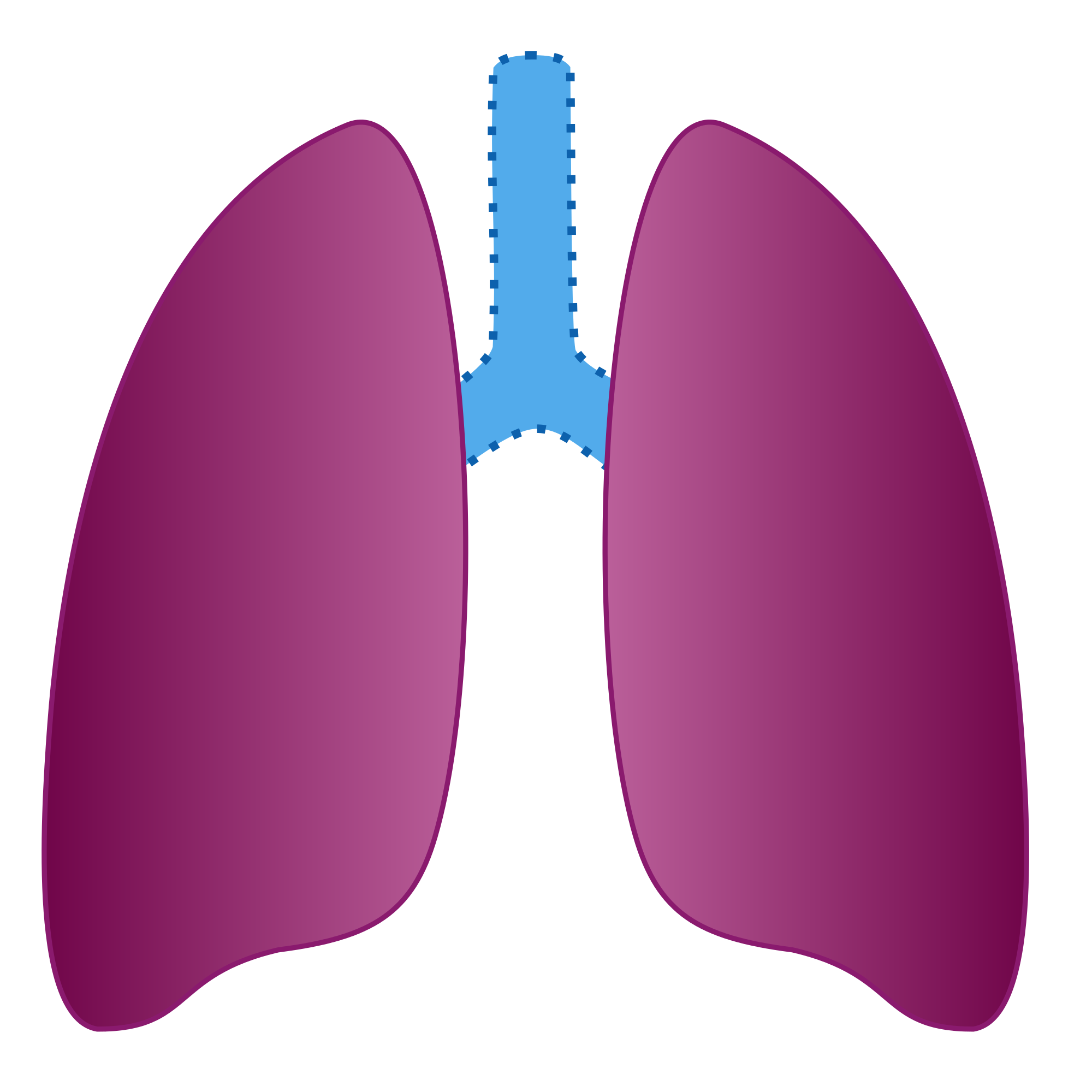 File ic ne poumon. Cough clipart poumons